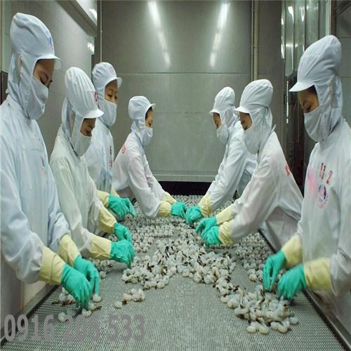 Đóng gói hải sản đông lạnh